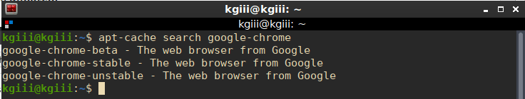 google chrome other versions
