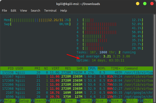 htop showing the uptime